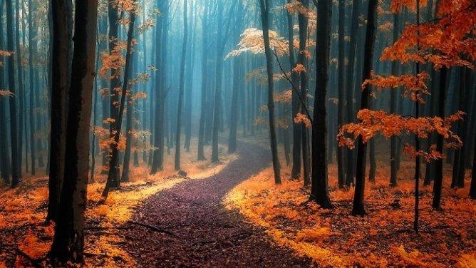 Podzim je pro mě čas zpomalení a očisty..