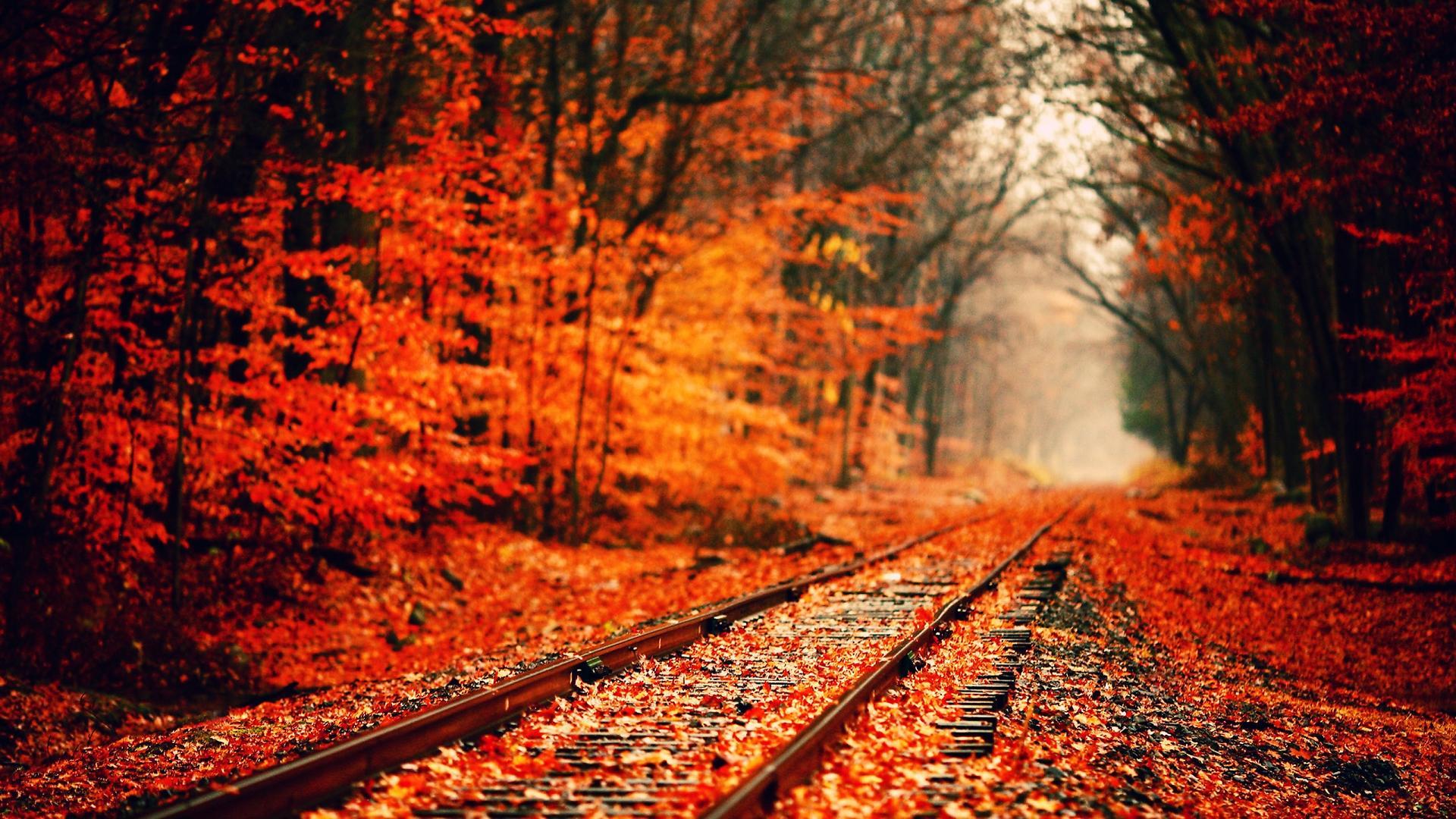 Mých 8 podzimních uvědomění